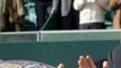 vista previa del artículo David Ferrer se impone en el Open de Tenis de la CV