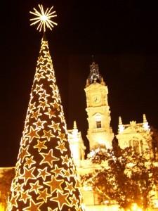 arbol6javiermesareig 225x300 Valencia se ilumina por navidad