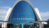 vista previa del artículo Avanqua se perfila como favorita para la gestión del Oceanogràfic
