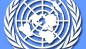vista previa del artículo La ONU se instala en Valencia
